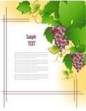 Marco de la uva libre illustration