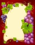 Marco de la uva del vector con la botella Fotografía de archivo