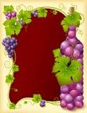 Marco de la uva del vector con la botella Fotos de archivo libres de regalías