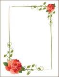 Marco de la vendimia con las rosas Foto de archivo