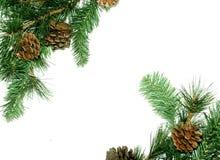 Marco de las decoraciones del árbol de navidad Fotografía de archivo