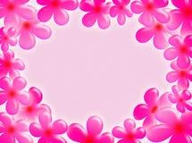 Marco de las flores Fotografía de archivo libre de regalías