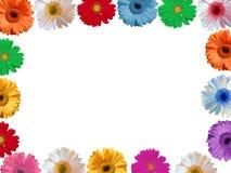 Marco de las flores Imagenes de archivo