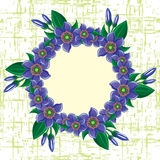 Marco de las flores imagen de archivo libre de regalías
