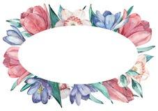 Marco de las flores de la primavera en estilo de la acuarela con el fondo blanco libre illustration