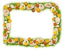 Marco de las flores y de las piedras en una hierba Foto de archivo libre de regalías