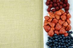 Marco de las frutas Foto de archivo libre de regalías