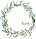 Marco de las hojas Foto de archivo