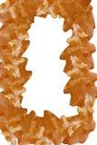 Marco de las hojas Fotografía de archivo libre de regalías