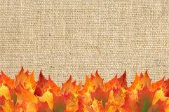 Marco de las hojas de arce del otoño sobre la textura de lino Imagen de archivo libre de regalías