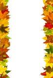 Marco de las hojas de otoño Imagen de archivo