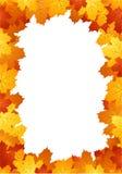 Marco de las hojas de otoño. Ilustración del vector. libre illustration