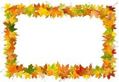 Marco de las hojas de otoño Fotografía de archivo