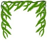 Marco de las ramas de árbol de abeto Fondo de la Feliz Año Nuevo ilustración del vector