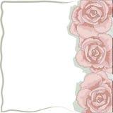 Marco de las rosas Fotografía de archivo