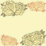 Marco de las rosas Fotografía de archivo libre de regalías