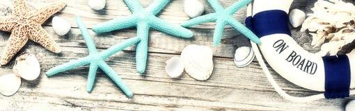 Marco de las vacaciones de verano con las conchas marinas fotografía de archivo libre de regalías