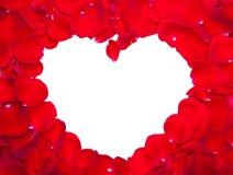 Marco de los pétalos de Rose Foto de archivo libre de regalías
