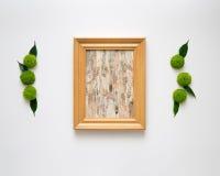 Marco de madera con el collage de la corteza de abedul Fotografía de archivo libre de regalías