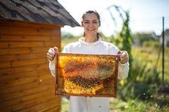 Marco de madera del control femenino joven del apicultor con el panal Recoja la miel Concepto de la apicultura fotografía de archivo libre de regalías