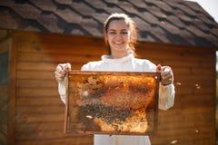 Marco de madera del control femenino joven del apicultor con el panal Recoja la miel Concepto de la apicultura fotos de archivo libres de regalías