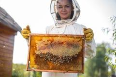 Marco de madera del control femenino joven del apicultor con el panal Recoja la miel Concepto de la apicultura imagenes de archivo