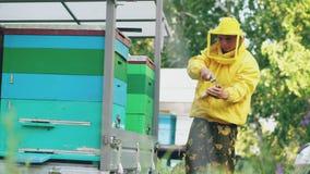 Marco de madera limpio de la miel del hombre joven del apicultor que trabaja en el colmenar el día de verano Imágenes de archivo libres de regalías