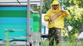 Marco de madera limpio de la miel del hombre joven del apicultor que trabaja en el colmenar el día de verano Fotografía de archivo