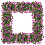 Marco de Pascua de las flores de campanas rosadas Imagenes de archivo