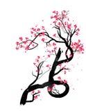 Marco de Sakura de la acuarela Fondo con las ramas del cerezo del flor El japonés dibujado mano florece el fondo ilustración del vector