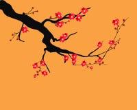Marco de Sakura de la acuarela Fondo con las ramas del cerezo del flor El japonés dibujado mano florece el fondo libre illustration