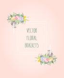 Marco decorativo del vector Elemento floral elegante para la plantilla del diseño, con el lugar para el texto Imágenes de archivo libres de regalías
