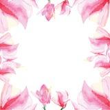 Marco decorativo floral Imagenes de archivo