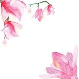 Marco decorativo floral Foto de archivo