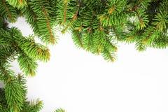 Marco del Año Nuevo para la enhorabuena de las ramas de árbol de navidad Fotografía de archivo libre de regalías