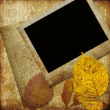 Marco del arte en el papel pintado Fotos de archivo libres de regalías