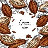 Marco del cacao Plantilla del dibujo del superfood del vector Grabado de la fruta, de la hoja y de la haba Comida sana orgánica foto de archivo libre de regalías