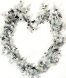 Marco del corazón de la pluma Foto de archivo