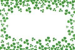 Marco del día del St Patricks de tréboles sobre blanco Imagenes de archivo