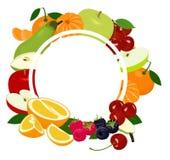 Marco del fondo de las frutas Las frutas coloridas clasificadas arreglaron en un círculo en el fondo blanco, espacio de la copia  stock de ilustración