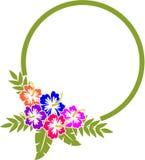 Marco del hibisco Foto de archivo libre de regalías