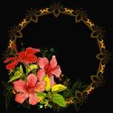 Marco del hibisco y de la vendimia Foto de archivo
