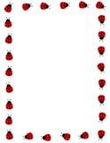Marco del Ladybug stock de ilustración