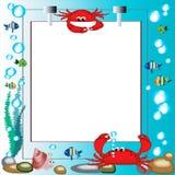 Marco del mar Imágenes de archivo libres de regalías