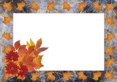 Marco del otoño Imágenes de archivo libres de regalías