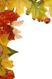 Marco del otoño Fotografía de archivo