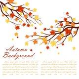Marco del otoño Imagenes de archivo