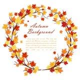 Marco del otoño Fotos de archivo
