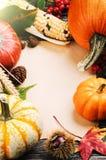 Marco del otoño con las calabazas, el maíz y las hojas Imagen de archivo libre de regalías