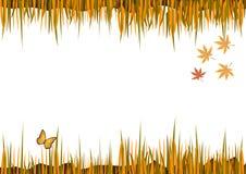 Marco del otoño con las hojas Fotografía de archivo libre de regalías